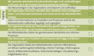Ausschnitt der Self-Assessment-Fragebogens zur ISO 9001.