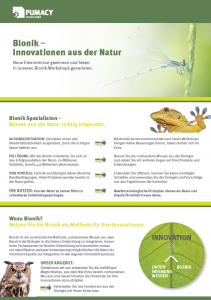 Flyer_Bionik_Screenshot