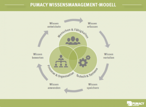 Pumacy Wissensmanagement-Modell
