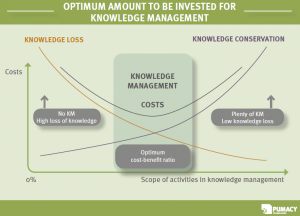 Optimal Investment in Knowledge Management