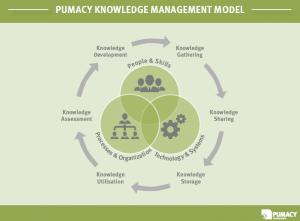 Pumacy Knowledge Management Model